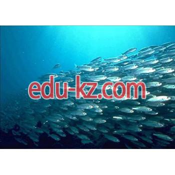 5В080400 — Рыбное хозяйство и промышленное рыболовство