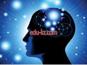 5V050300 — Psychology