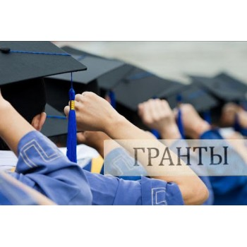 Musin proposed to give grants for IT-specialties to private universities