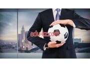 5В052300 Management of sport